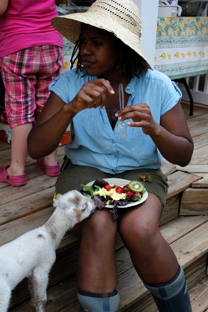 """Bon Bon,"" steals some locally grown lettuce from a Farmer For a Day participant's plate at Darby Farm in Good Hope, Ga., on Saturday, April 28, 2012. (© Sarah Osbourne, Sarahkosbourne@gmail.com)"